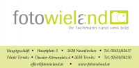 hpfixseparat_wieland_logo